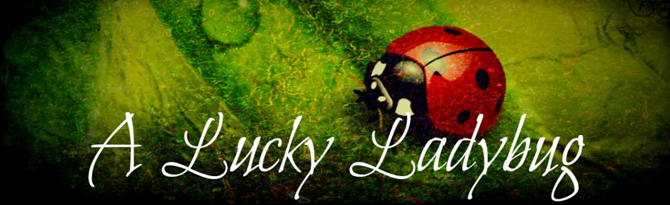 26ab53a6d2 Book Review on A Lucky Ladybug - Joan E Childs, LCSW