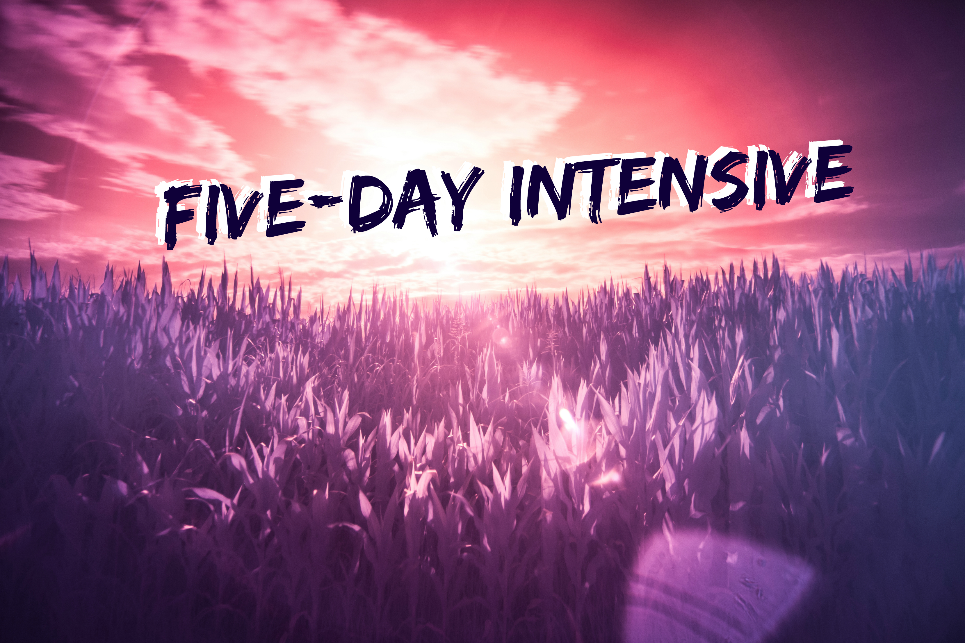 5 day intensive