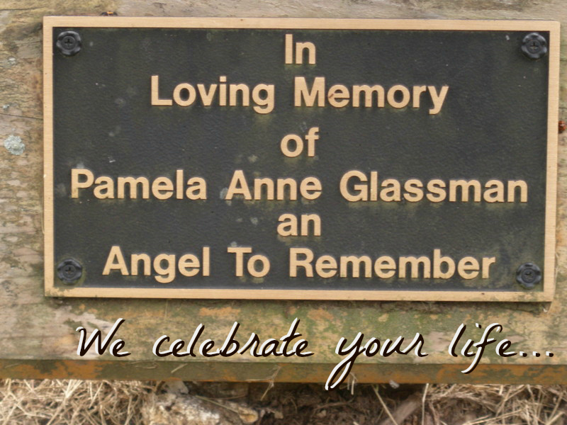 Pamela Anne Glassman: An Angel to Remember – My Daughter's Battle with Bipolar Disorder By Joan E Childs